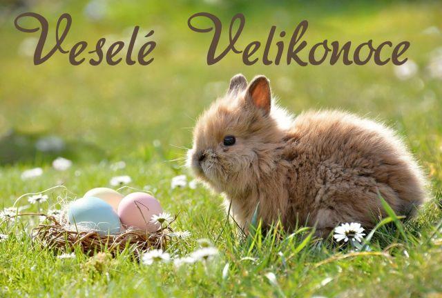 Veselé Velikonoce | Dolní Tošanovice
